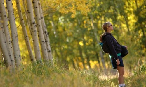 McCall Idaho Hikes